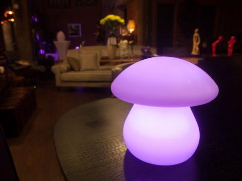 LED Indoor Outdoor Furniture RGBW Wi-Fi Waterproof Lamp Alive! LEDZ Mushroom